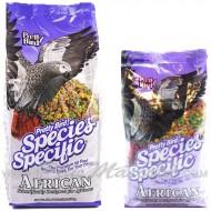 Pretty Bird African Special