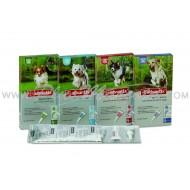 Bayer Advantix 4 Pipetas Antiparasitarias