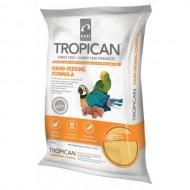 Papilla Tropican Aves y Loros